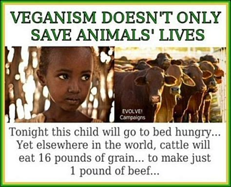 veganism in an oppressive world a vegans of color community project books mission statement even the eugene veg education