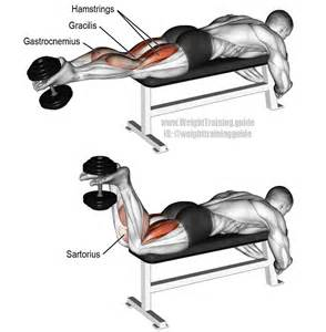 Decline Sit Up Bench Dumbbell Leg Curl Exercise Instructions And Video Weight