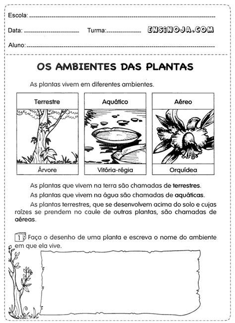 Atividade de ciências 3° ano plantas - Ensino Já | os ambientes das plantas | Pinterest