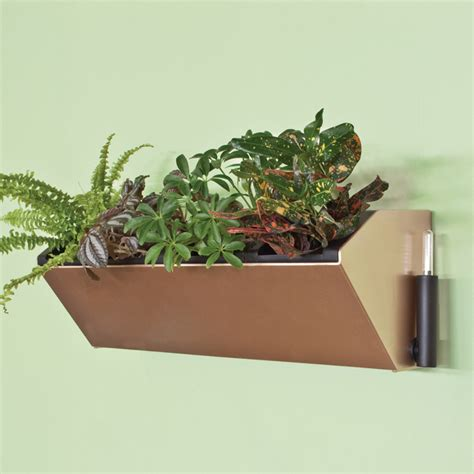 self watering wall planters 22 5 quot vesi self watering vertical wall planter pride