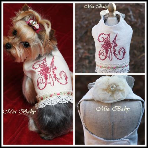 clothes for yorkie puppies clothes for yorkies www imgkid the image kid has it