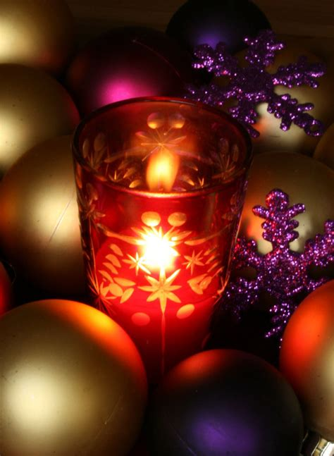 Best Trees For Backyard Creative Amp Inspiring Modern Christmas Candles Decorations