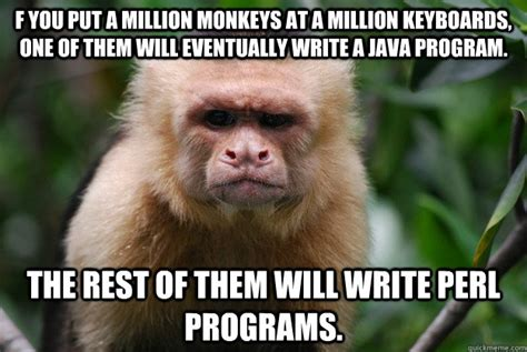 Funny Monkey Meme - 15 funny and adorable monkey memes