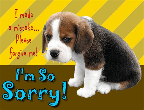 sorry puppy puppy is so sorry free sorry ecards greeting cards 123 greetings