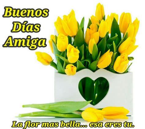 Imagenes Buenos Dias Amiga | buenos d 237 as amiga la flor mas bella esa eres tu