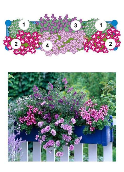 Pflanzzeit Geranien Balkon by Die Besten 25 Balkon Pflanzen Ideen Auf