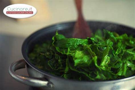 come cucinare spinaci gli spinaci cucinare it