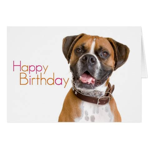 boxer cards happy birthday boxer card zazzle