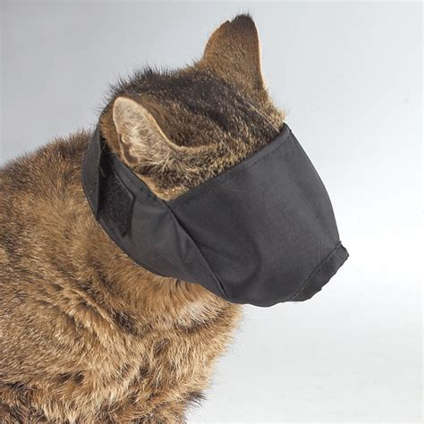 muzzle for biting small black guardian gear cat muzzle grooming sm lined ebay