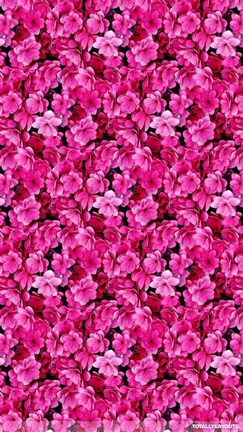 wallpaper flower whatsapp bright pink flower montage whatsapp wallpaper floral