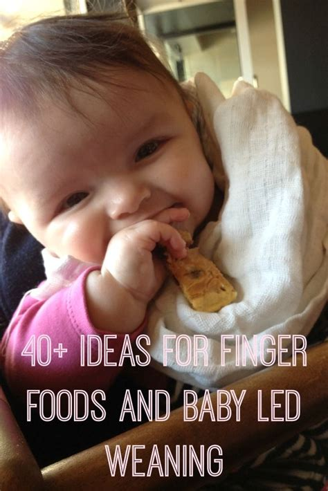 1000 images about baby led weaning on finger foods food and meals 1000 images about autos on cars ferrari and teeth