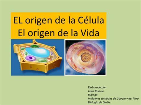 el origen de la el origen de la c 233 lula