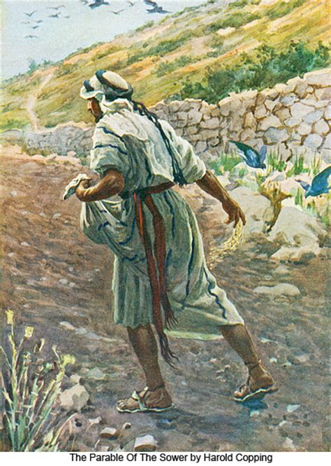 high places a parable books parables of the sower image gallery