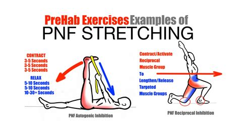 holding pattern sow meaning prehab exercises effective stretching techniques