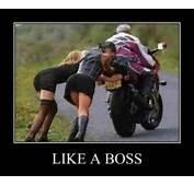 Like A Boss  34 Pics FunnyMemecom