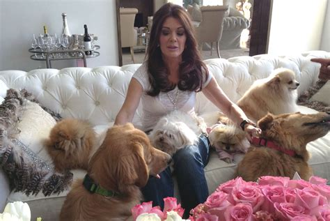 vanderpump dogs photo handout