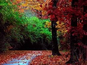 fall landscape beautiful autumn season wallpapers hd nice wallpapers