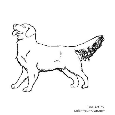 Golden Retriever Sitting Outline by Free Coloring Pages Of Golden Retrievers