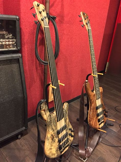 best warwick bass 75 best images about warwick basses on buzzard