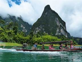 The Tropical Rainforest Plants - khao sok national park