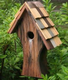 cool bird house plans nottingham forest birdhouse so that s cool