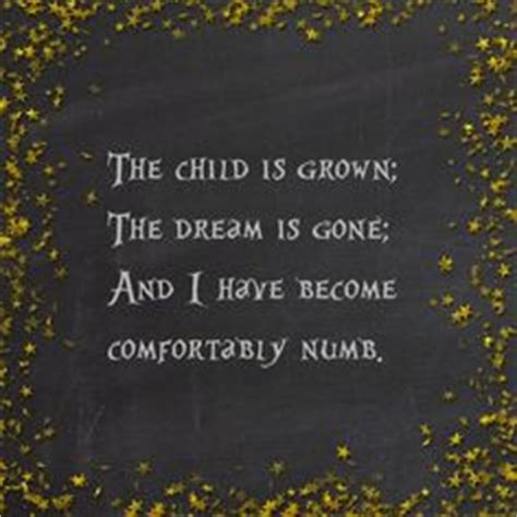 lyrics to comfortably numb by pink floyd pink floyd on pinterest pink floyd david gilmour and
