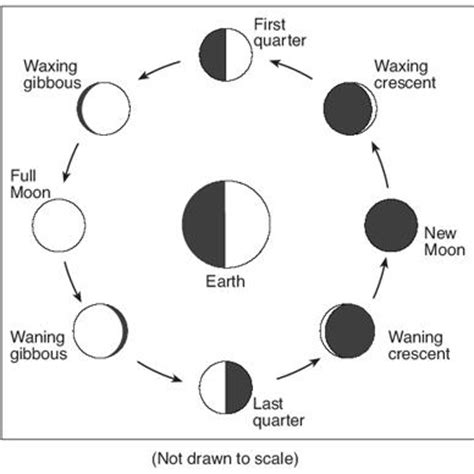 lunar phases diagram bad diagrams