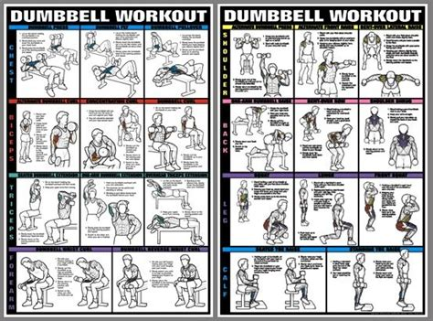 weight flexibility poster building charts posters exercise charts