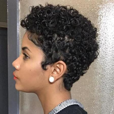 curly pudding for american hair 25 best ideas about short natural haircuts on pinterest