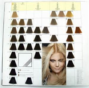 keune tinta color keune tinta color swatch hairstylegalleries