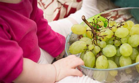 baby ab wann brot essen welches obst ist ab wann f 252 r babybrei geeignet