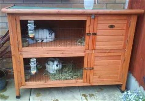 Rabbit Lives In A Hutch owning a pet rabbit ideas 4 pets