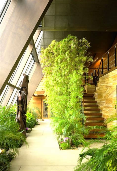 dream indoor garden ideas   amaze
