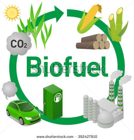 biofuel stock photos, royalty free images & vectors