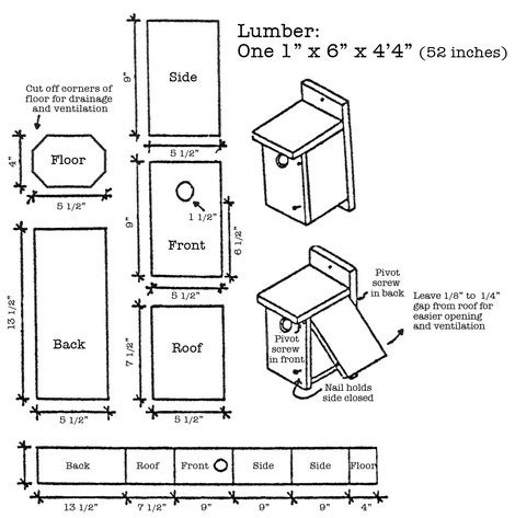 Eastern Bluebird House Plans Free Wildlife Exemption Nest Box Design Wildlife Exemption In