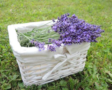 Badezimmer Deko Lavendel by Badezimmer Deko