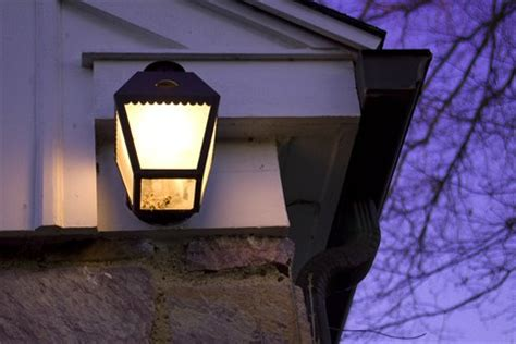 Keep Bugs Away From Porch Light stink bug 10 tips on how to get rid of stink bugs