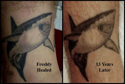 new tattoo exposed to sunlight before and after photos show how tattoos age and fade