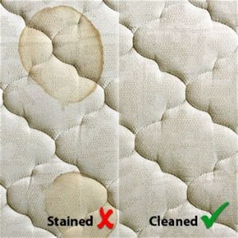 Stains Out Of A Mattress by Mattress Stain Remover Daily Express
