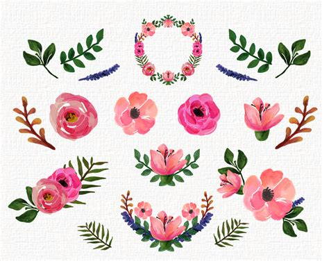 floral clip freebies free watercolor floral peonies roses clip