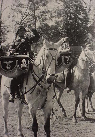 Silbo Polisih Made In Germany 1155 best images about war horses donkeys and mules on
