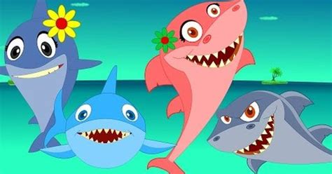 baby shark music baby shark song music for children rainbow songs by