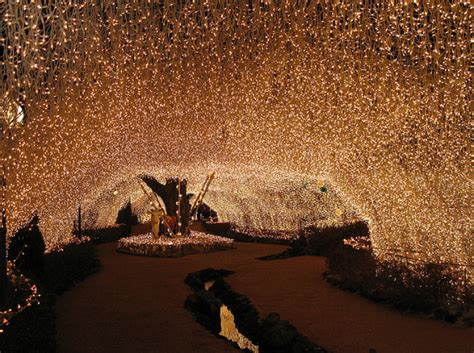 where can i buy fairy lights planning to propose where in the gta can i find fairy