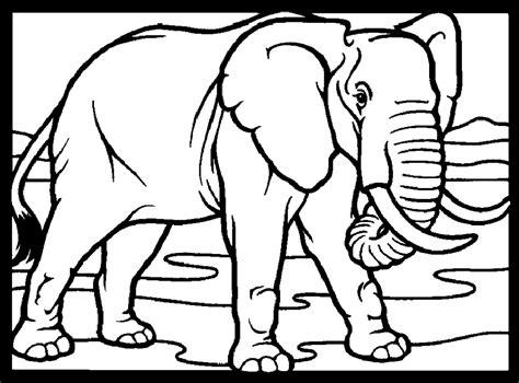 mewarnai gambar gajah alamendahs blog