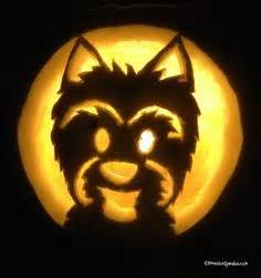 yorkie pumpkin stencil pumpkin carving ideas on easy pumpkin carving pumpkin carvings and