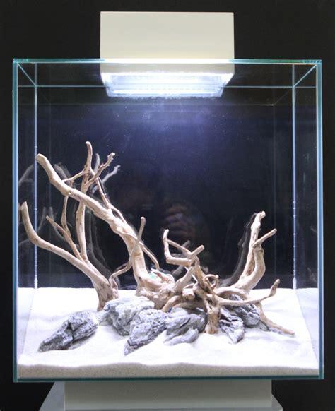 aquarium design group hardscape fluval edge hardscape google zoeken fish pinterest