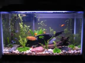 Fresh Water Aquariums http://www.channels.com/episodes/15596296