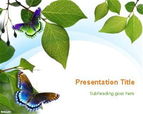 butterfly themes for powerpoint 2010 free springtime powerpoint template