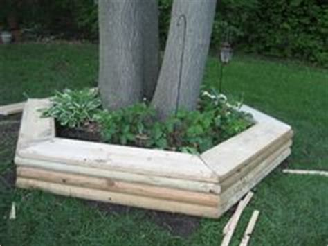 tree ring bench 1000 ideas about tree bench on pinterest tree seat bench around trees and fence