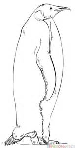 Emperor Penguin Outline by How To Draw An Emperor Penguin Step By Step Drawing Tutorials
